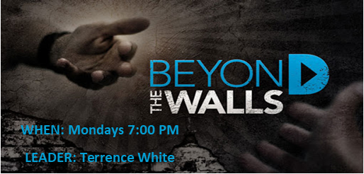 Beyond the walls.png