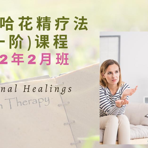 巴哈花精疗法第一阶中文课程 (2022年 2月班)
