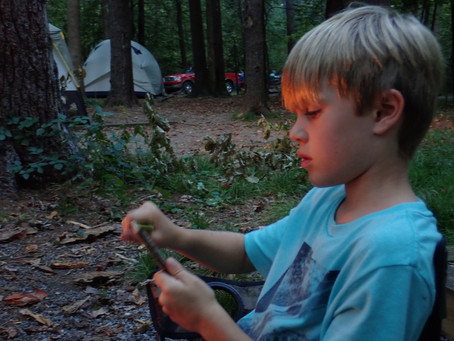 Cataloochee Camping