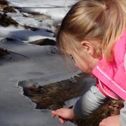 Ice Exploration