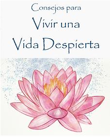 Libro-e_imagen.png