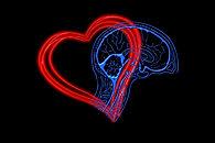 heart-4682756_1920.jpg