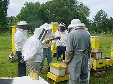 beekeeping_workshop24jun06_02.jpg