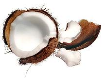 купить кокосовое масло,ПРЕМИУМ ГРУПП,нерафинированное кокосовое масло оптом и в розницу в москве,купить дешего нерафинированное кокосовое масло,купить натуральное кокосовое масло,кокосовое масло bharma,кокосовое масло бхарма