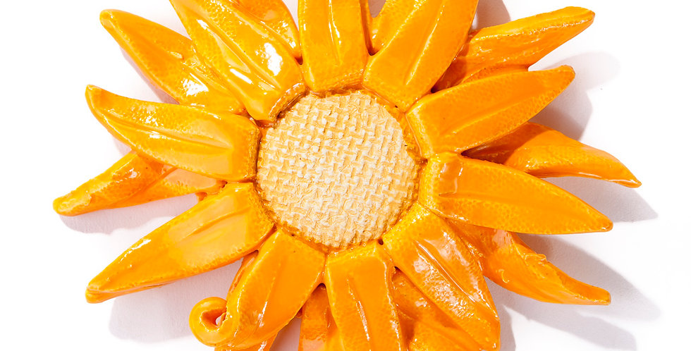 Gerbera Daisy - Orangerie