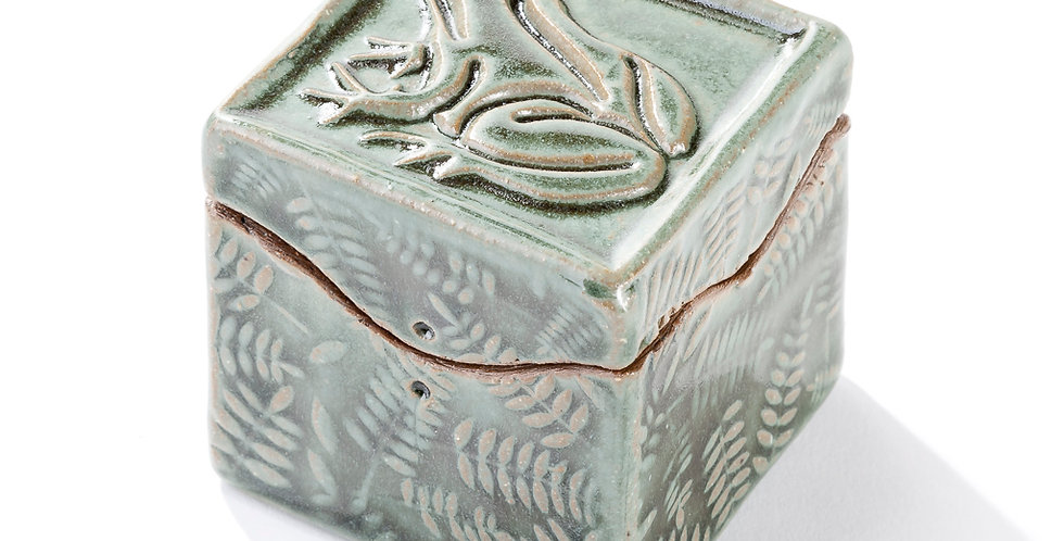 Itty Bitty Box - Leopard Frog