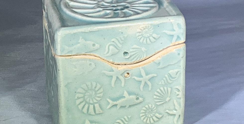 Itty Bitty Box - Nautilus/Aqua