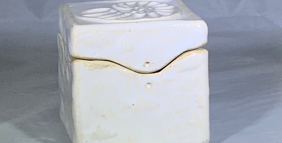 Itty Bitty Box - Nautilus/Snow