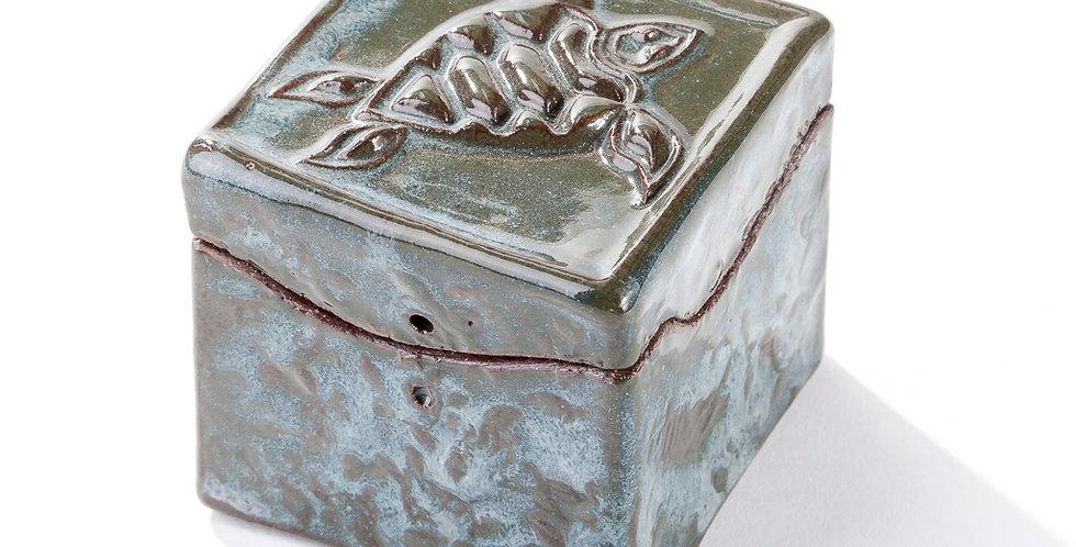 Itty Bitty Box - Sea Turtle