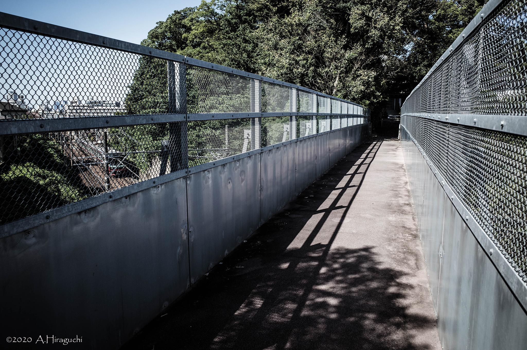 城址への橋