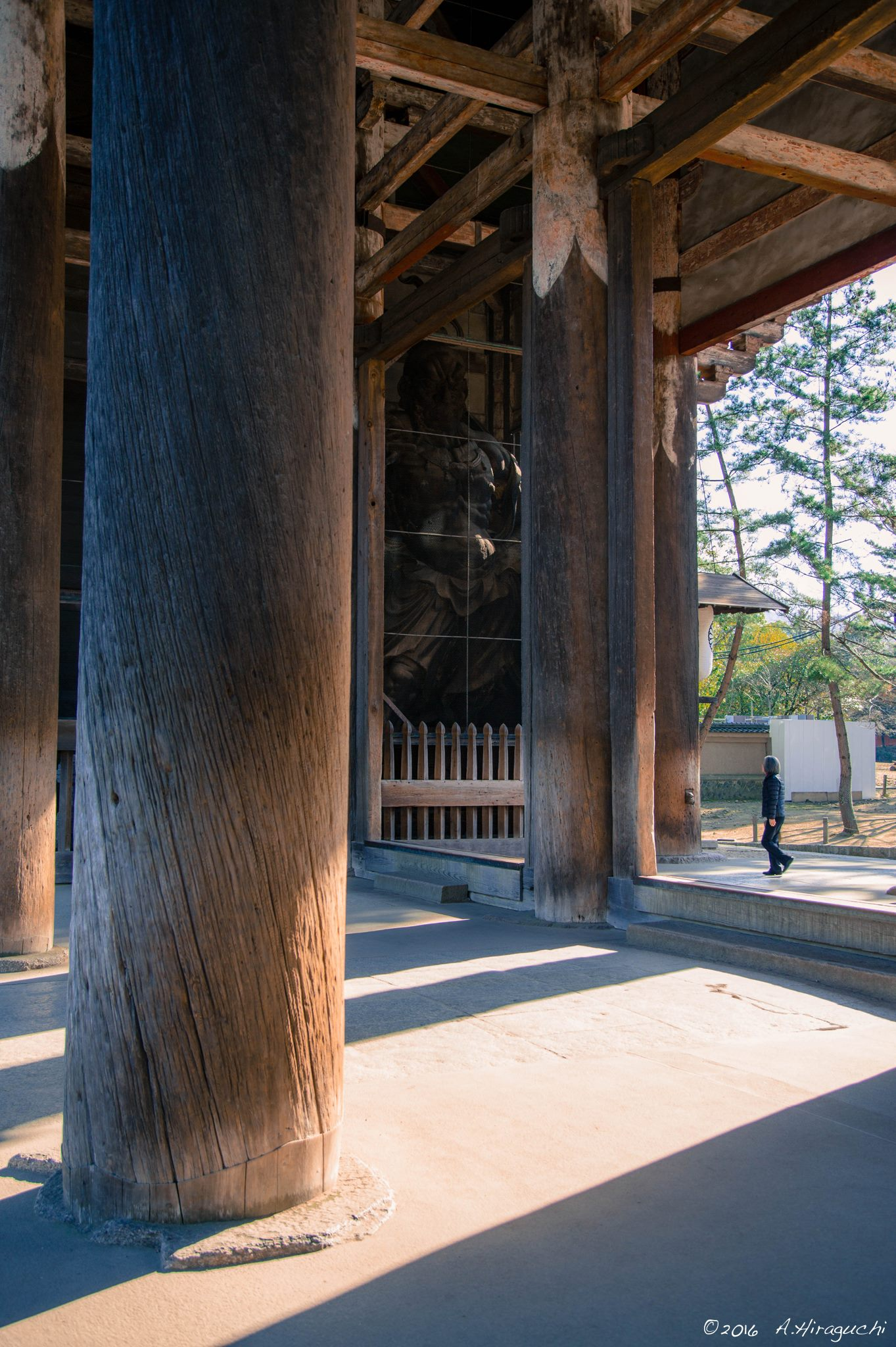 東大寺の朝