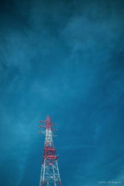 青空に映える