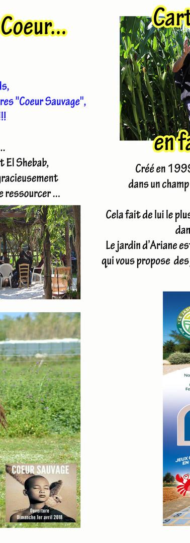 Page_Interne_37&38_Book5_Souris_à_la_Vie