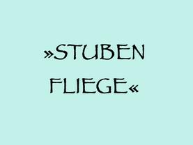 12. 8. (W) – STUBENFLIEGE: WIENER MELANGE