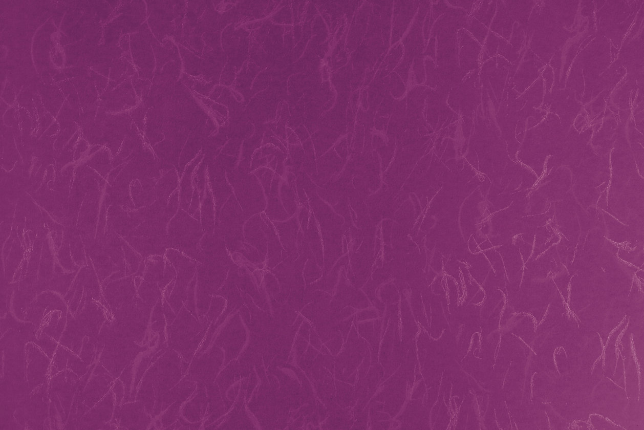 紫⑥.jpg