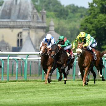 Chantilly - Prix du Jockey Club Review