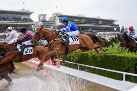 Auteuil Preview - 17th September