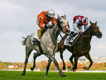 Weekend Review - Auteuil