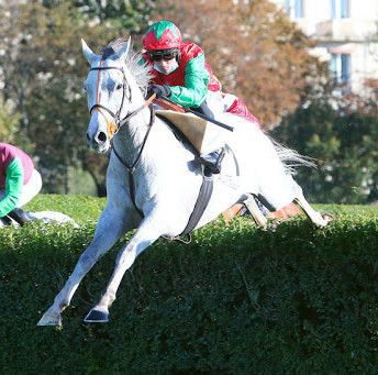 Le Berry - The Best 4 Year old National Hunt Horse in Europe