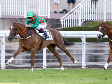 Auteuil Preview - Saturday 26th September