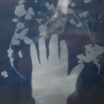 Fateline 1, 2018,8x10in,cyanotype