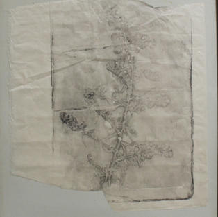 "Fragment, Monoprint, 16""x14"", 2020"