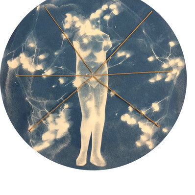 Ode to Ana Mendita, 12x12, 2019, cyanotype