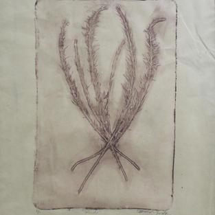 "weeds, Monoprint, 16""x14"", 2020"