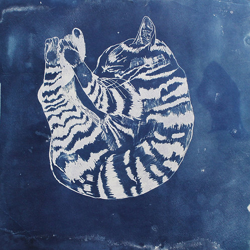 Familiar I, Cyanotype