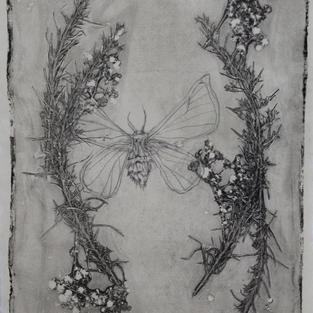 """Again, The Thought of All That Life Might Have Been Had, Monoprint and Graphite, 13""""x 9"""", 2020"""
