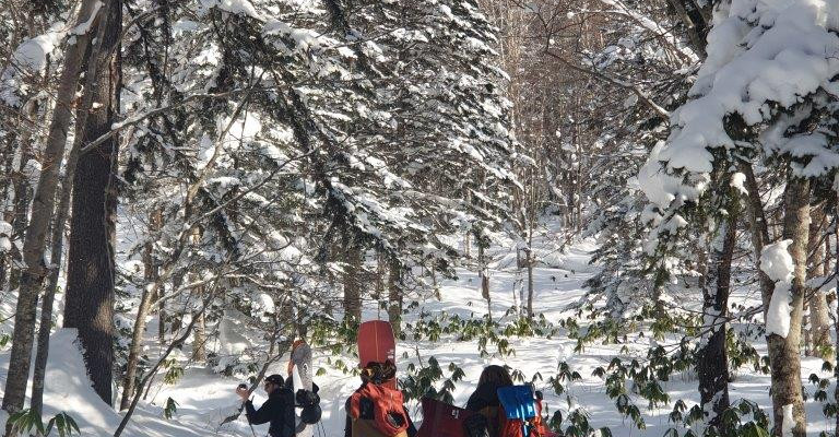 Hiking Mt Yotei