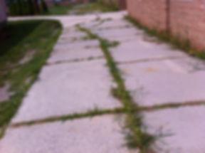 School Walkway 1.JPG
