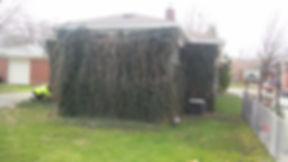 Ivy House 1.jpg