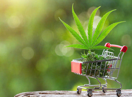 Cannabis and the Decentralized Web