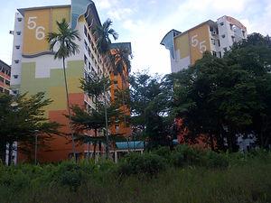 singapore-20130202-00226.jpg
