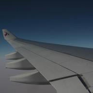 Survive a Plane Trip
