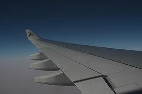 De vleugeltip van vliegtuigen is afgeleid van vogelvleugels en zorgt voor veel brandstofbesparing
