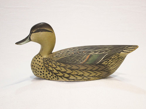 Oliver Lawson Pintail Hen
