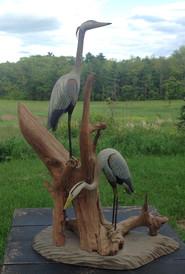 Gilley Herons