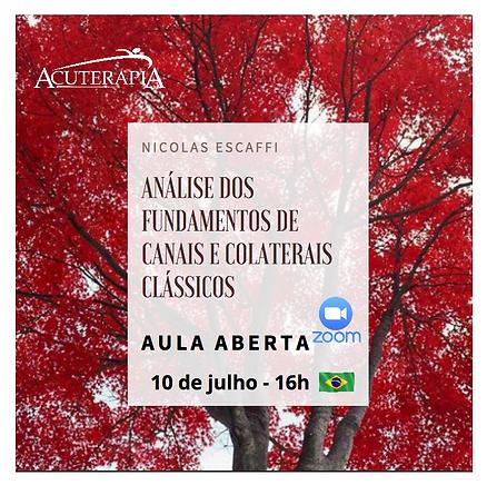 Captura_de_Tela_2020-07-05_às_06.46.32.