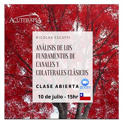 Captura_de_Tela_2020-07-05_às_06.46.19.