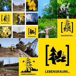 art4nature #BäumeSetzen 07.jpg