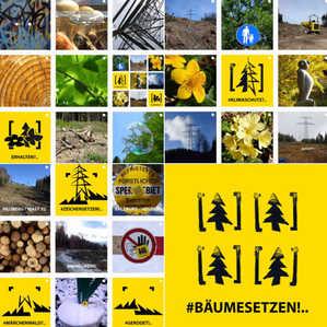 art4nature #BäumeSetzen 01.jpg