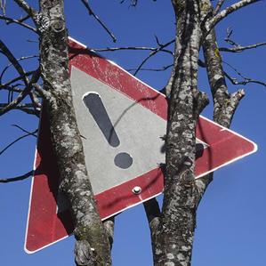 art4nature #BäumeSetzen 06.jpg