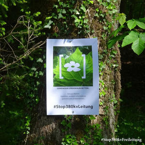 art4nature Auf Bäumen 05.jpg