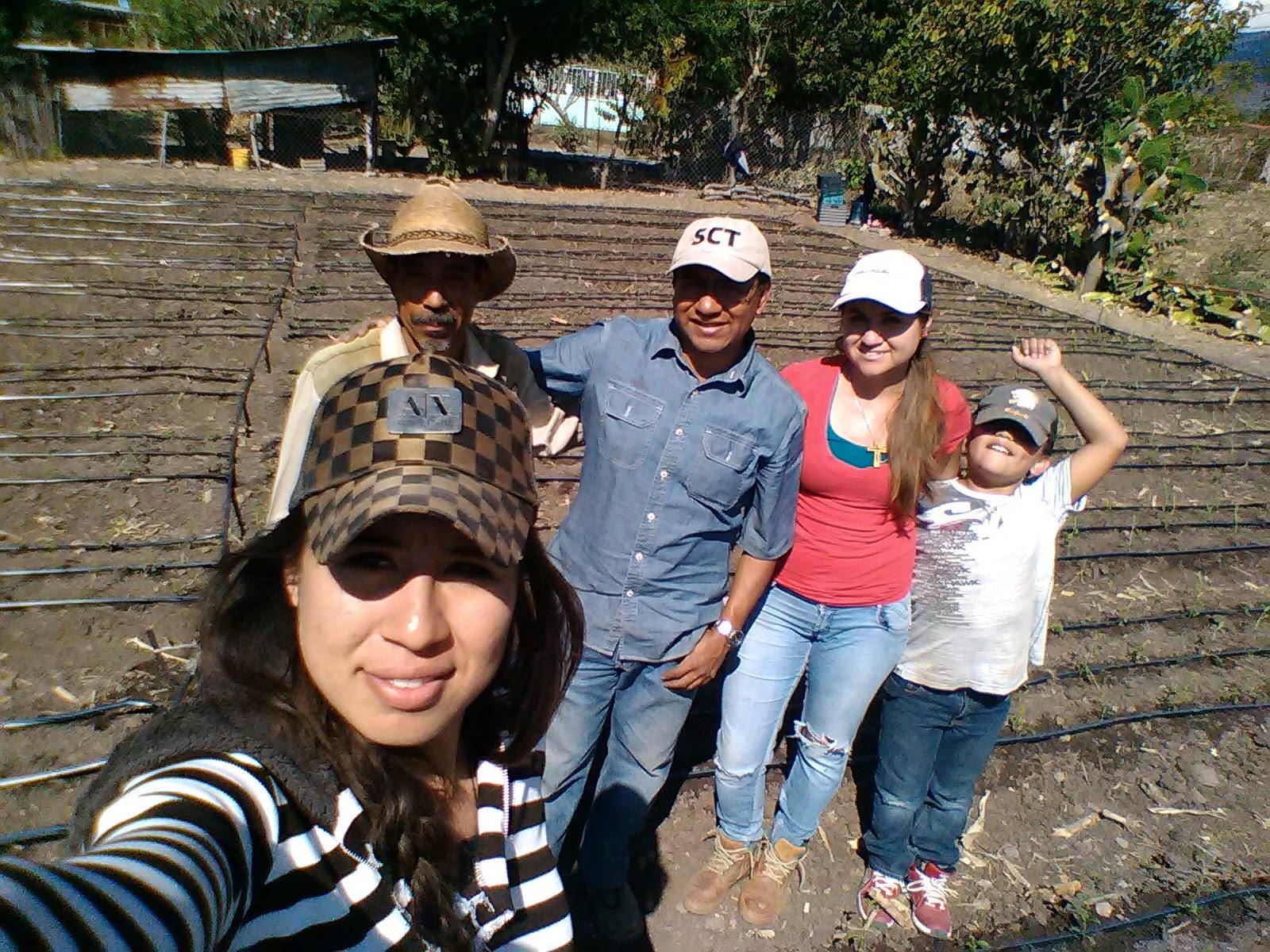 Moringa en Michoacán