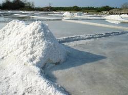 Sal de Mar costas de Colima