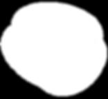 white_logo_ohne_schrift_transparent_back