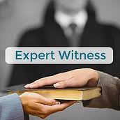Expert witness home pg.jpg