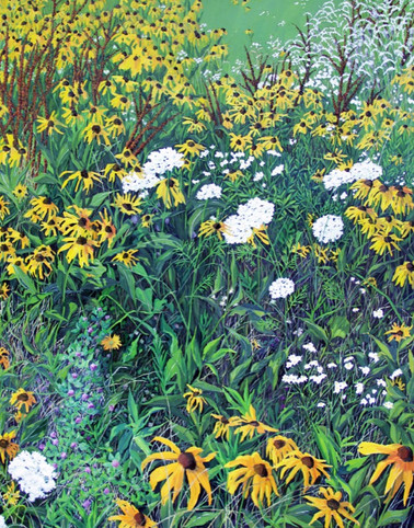 Berkshire Meadow